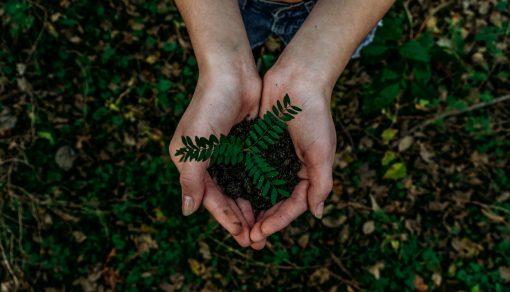 Aarde compost uitvaart